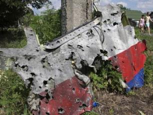 調查組:查MH17失事原因需做大